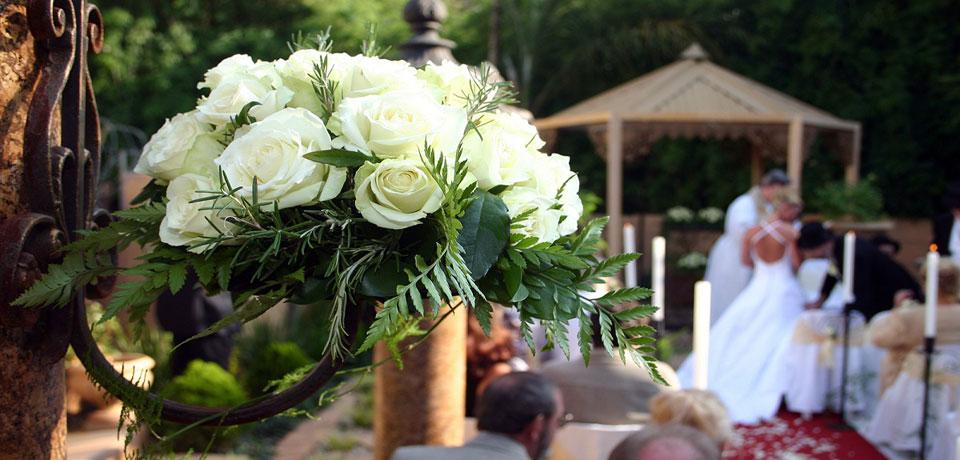 Windsor Ontario Wedding Officiants Kettle Creek Weddngs
